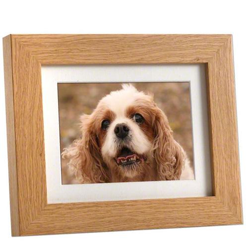 Photo frame pet urns