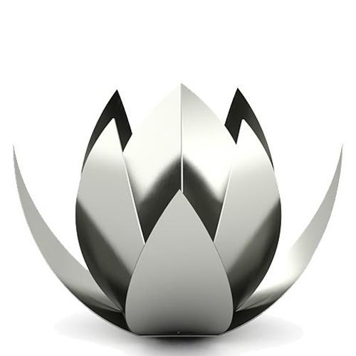 Steel (Stainless Steel)