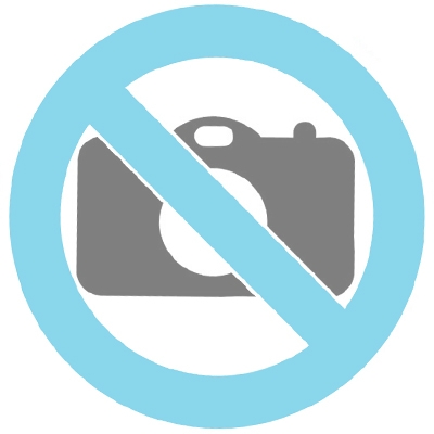 Glass cremation urn with bird and feather